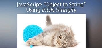 "JavaScript ""Object to String"" Using <em>JSON.stringify()</em>"