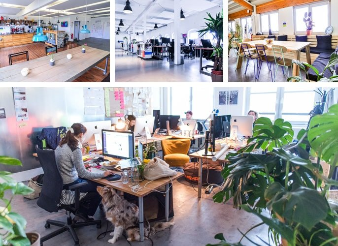 Jimdo office spaces and workstations capitalize on natural light