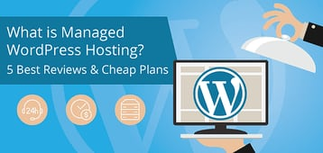 What is Managed WordPress Hosting? (5 Best Reviews)