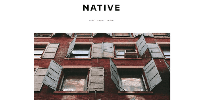 Screenshot of Squarespace's Native template