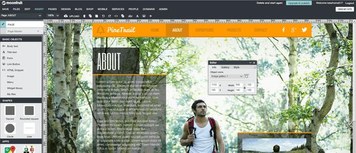 Screenshot of Moonfruit site builder