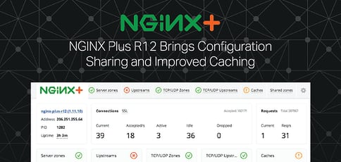 New in 2017: NGINX Plus R12 Pushes Forward With High-Performance Delivery Platform, Bringing Configuration Sharing and Improved Caching