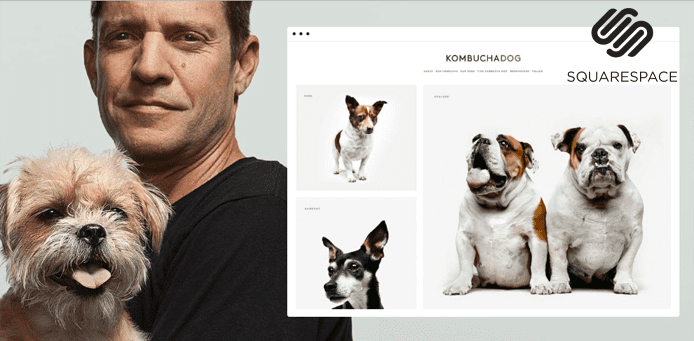 Photo collage of Michael Faye and screenshot of the Kombucha Dog website