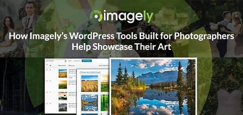 Imagely Delivers Wordpress Tools Built For Photographers To Showcase Their Art