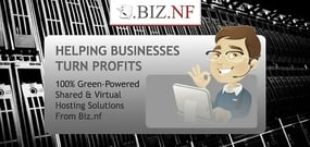 How BIZ.NF is Helping Environmentally Conscious Businesses Turn Profits Online Through 100% Green-Powered Shared & Virtual Hosting Solutions
