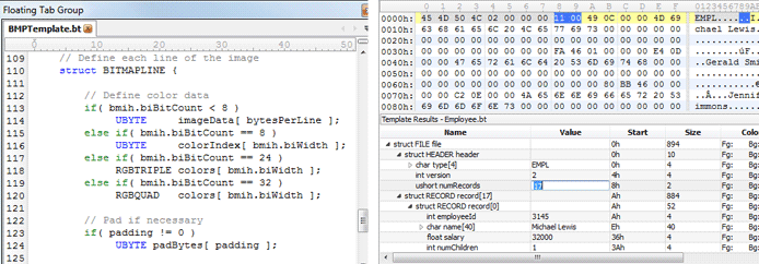 Screenshots of binary templates in the 010 Editor