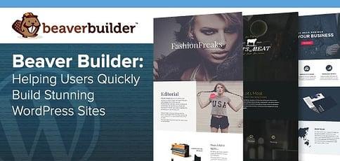Beaver Builder Helps Users Build Stunning Wordpress Sites