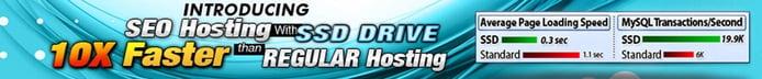 Banner depicting SEO hosting packages