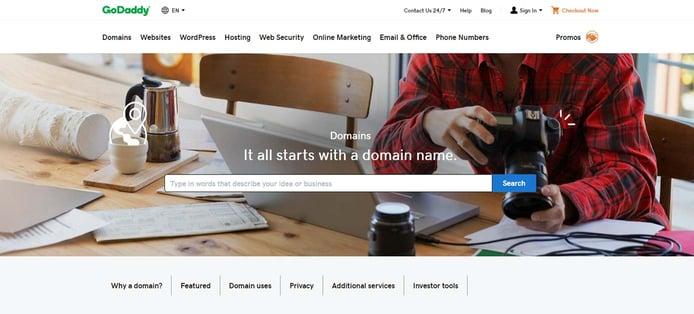 Screenshot of GoDaddy domain registrations