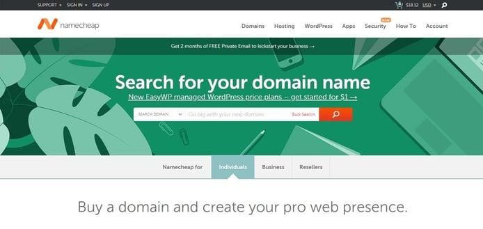 Screenshot of Namecheap domain registrations