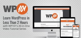 Learn WordPress in Less Than 2 Hours with WP101's All-in-One Video Tutorial Series