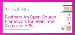 Feathers: An Open-Source Framework for Real-Time Apps and APIs Featuring Server-Agnostic Architecture