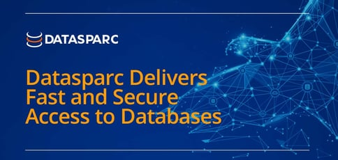 Datasparc Delivers Fast And Secure Access To Databases