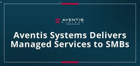 Aventis Systems Helps Smbs Establish Web Presence