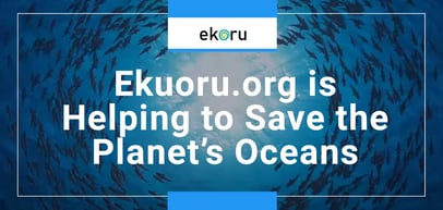 Powered by Green Servers, Ekoru Donates 60% of Its Profits to Environmental Causes to Save Our Oceans