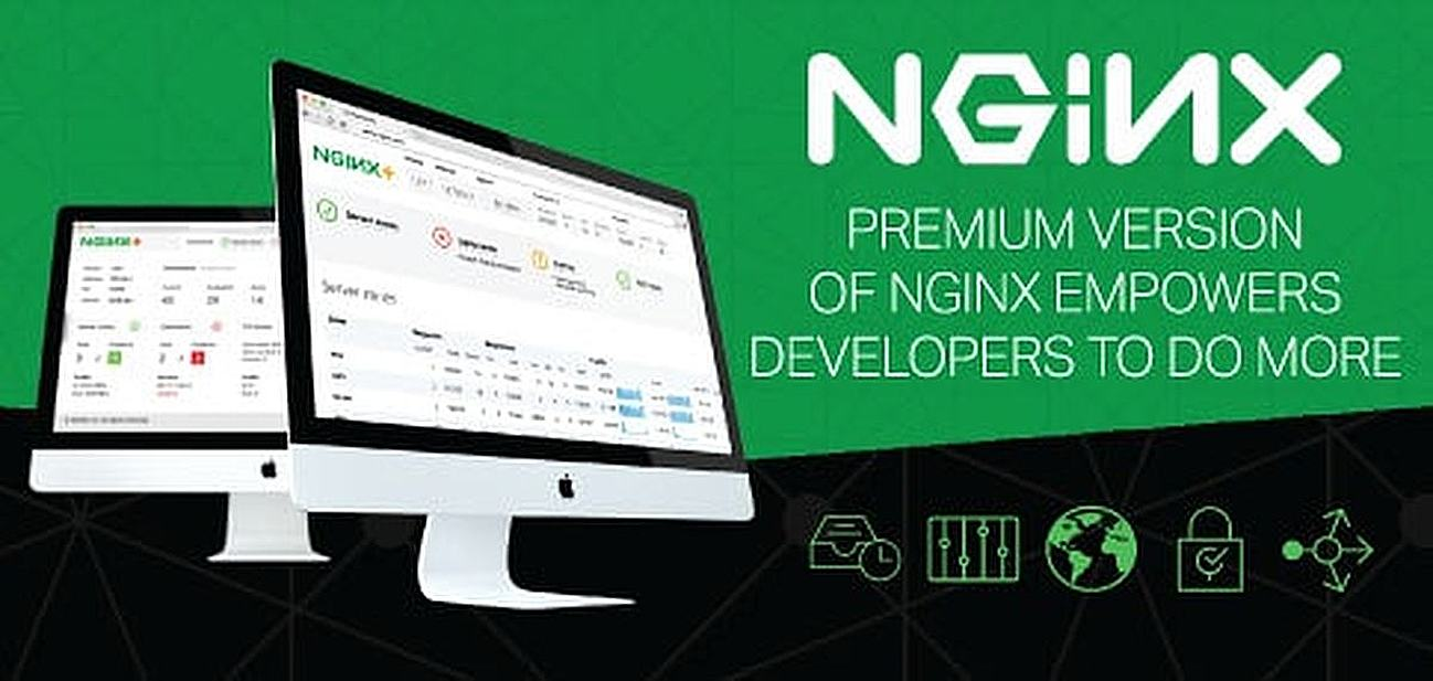 Premium Version of NGINX Empowers Developers to do More