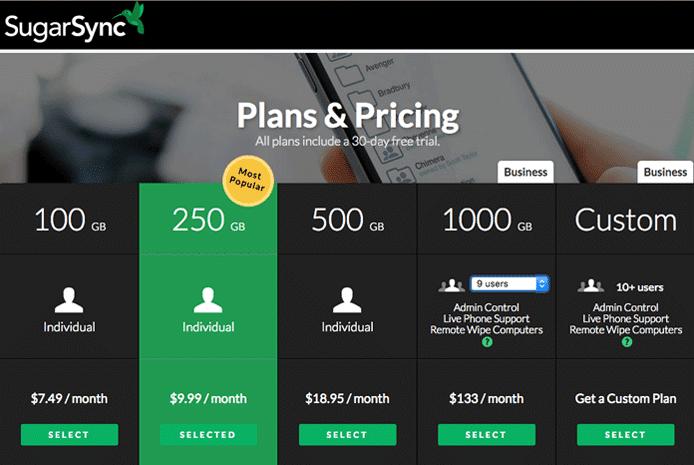 Screenshot of SugarSync's pricing tiers