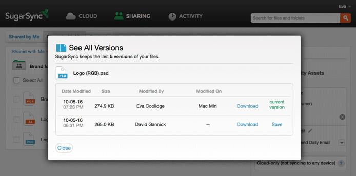 Screenshot of SugarSync's automatic file versioning