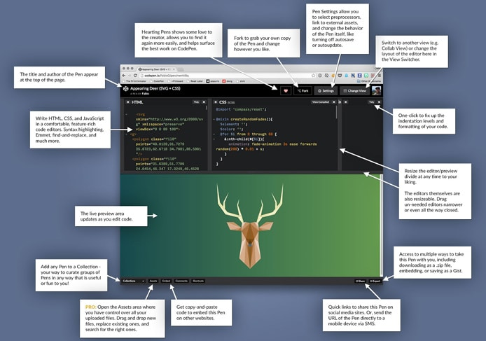 Graphic of CodePen editor's features