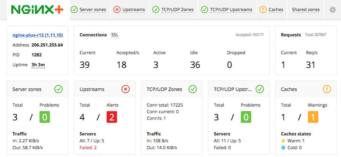 Screenshot of NGINX Plus dashboard