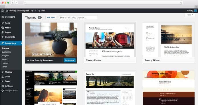 Screenshot of WordPress theme manager
