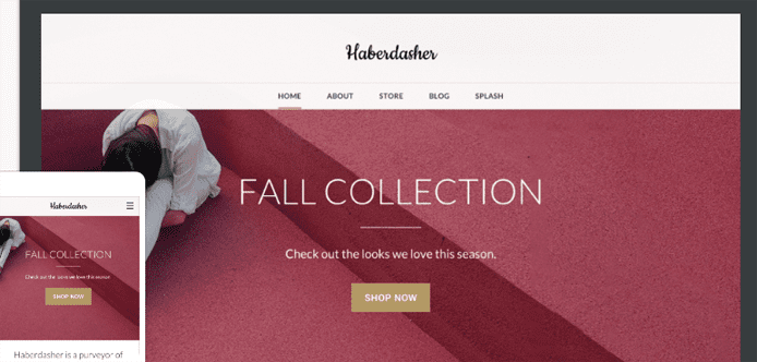12 Best Free, Premium, Responsive, and Custom Weebly Themes