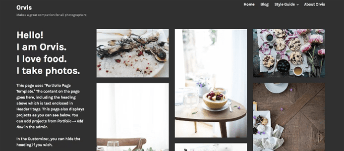 Screenshot of a WordPress theme