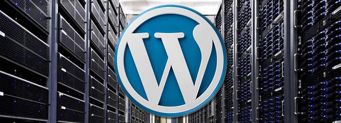 Fast WordPress hosting graphic