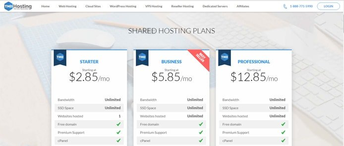 Screenshot of TMDHosting shared hosting price tables