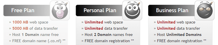 Screenshot of Biz.nf's hosting plan feature sets