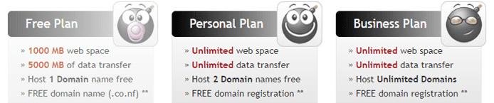 Screenshot of Biz.nf's hosting plan feature sets