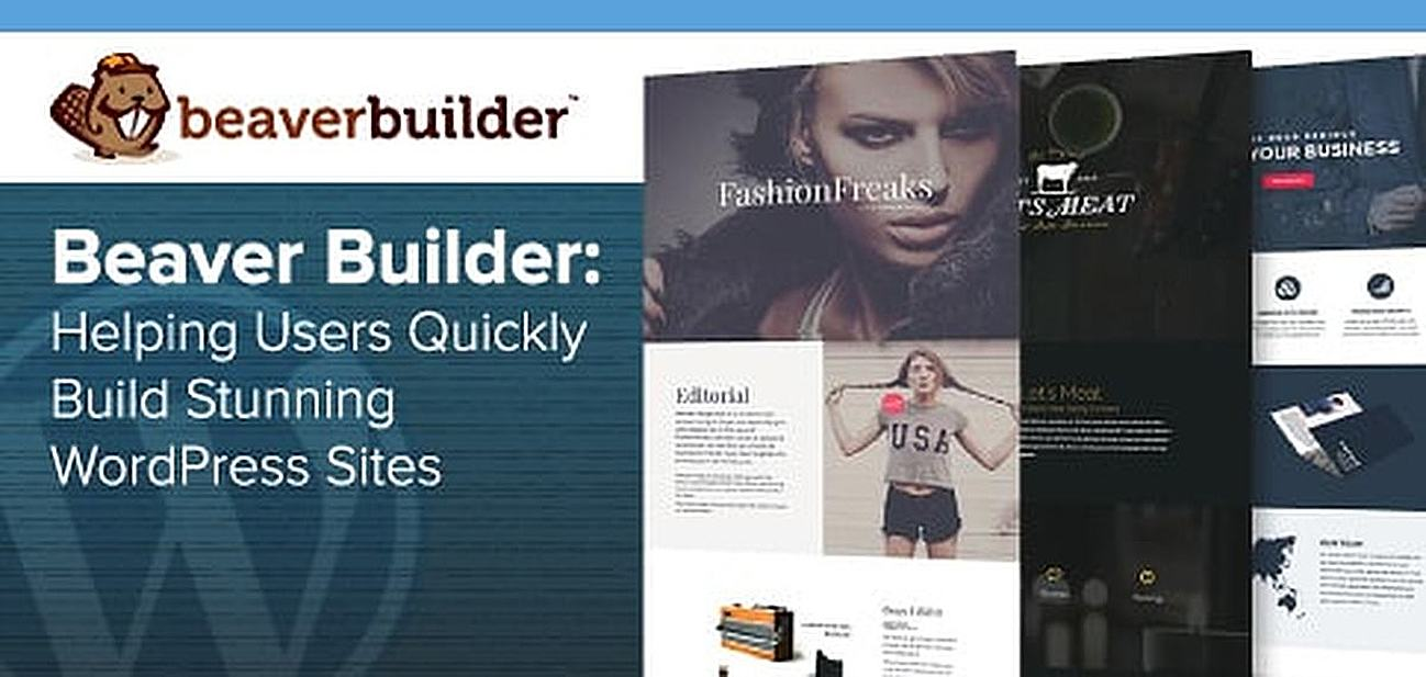 Beaver Builder — How the Comprehensive Design Platform Has Enabled 500K+ Users to Quickly Build Stunning, Responsive WordPress Sites