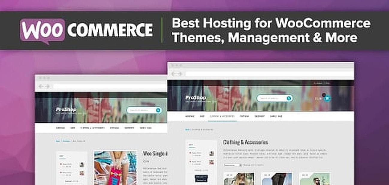 12 Best WooCommerce Hosting Reviews (2018): WordPress & More