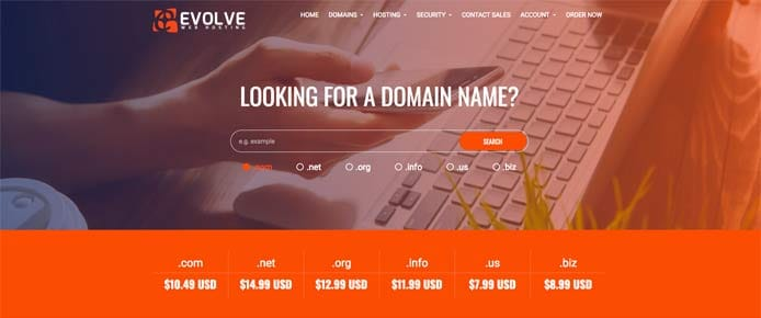 Screenshot of new Evolve Web Hosting site