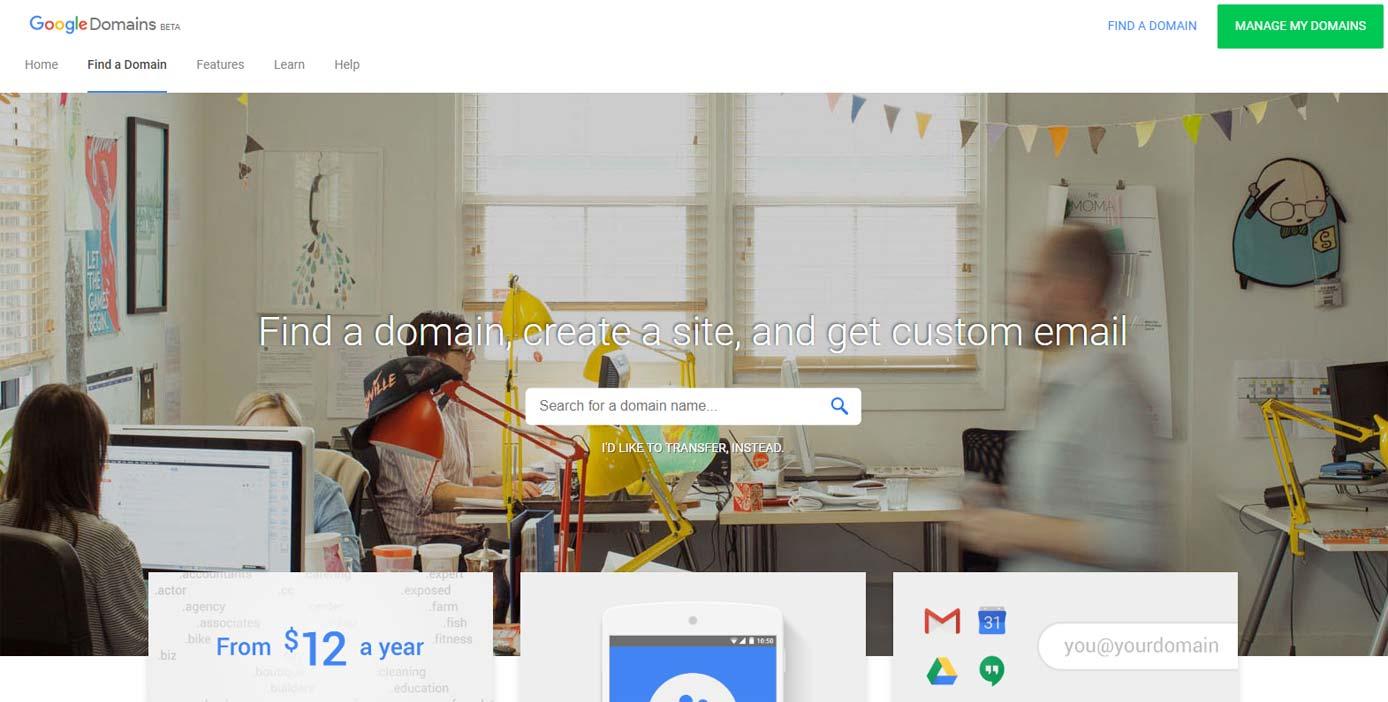 Screenshot of Google domain registrations