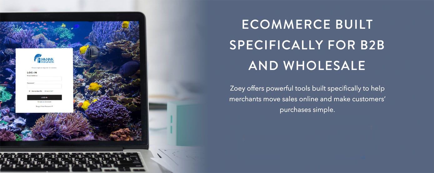 Ecommerce built specifically for B2B and wholesale