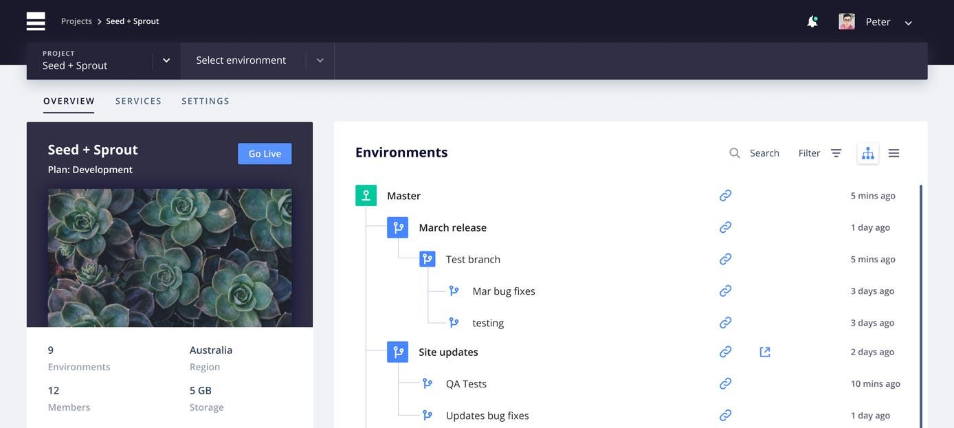 Screenshot of Platform.sh dashboard